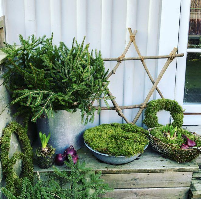Gör en utestjärna av trädgårdsavfall